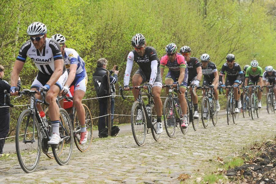 Roubaix Pro Rce, sports tours international